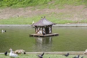 parque guinle río de janeiro foto