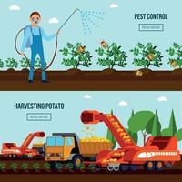 Potato Cultivation Flat Compositions Vector Illustration