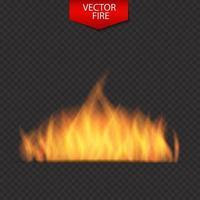Naturalistic Fire on Dark Background. Vector Illustration