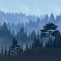 Pine Forest Fog Illustration Vector Illustration