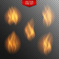 Naturalistic Fire on Dark Background. vector