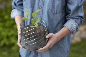 persona sosteniendo una planta en una maceta de plástico foto