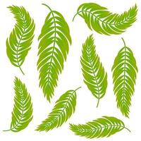 Set of flat isolated abstract green leaves curving in different directions vector