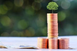 saving money and business growth concept, finance and investment concept photo
