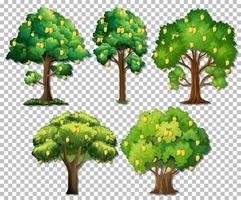 Set of different trees on transparent background vector