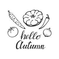 letras dibujadas a mano con elementos decorativos, tomate, pimiento, zanahoria, cebolla. texto hola otoño en el fondo blanco. ilustración vectorial. perfecto para impresiones, volantes, pancartas, invitaciones vector