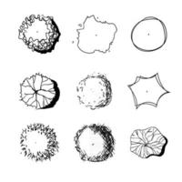 Hand drawn set of graphic trees, top view, for architecture and landscape. vector