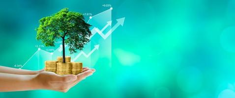 Mano sujetando el árbol en crecimiento en monedas con gráfico de stock sobre fondo verde foto