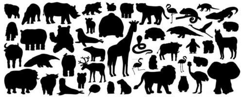 Set of silhouette cartoon isolated Savannah African American forest animals. Vector tiger lion rhinoceros buffalo zebra elephant giraffe crocodile tapir hippo bear orangutan penguin flamingo