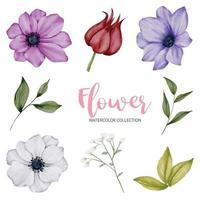 muchos tipos de hermosas flores en estilo acuarela vector