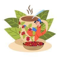 Fresh coffee from coffee plantations To organic coffee shop vector