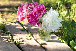 un ramo de grandes peonías blancas y rosas en un frasco de vidrio sobre un puente de madera en el jardín. florecer foto