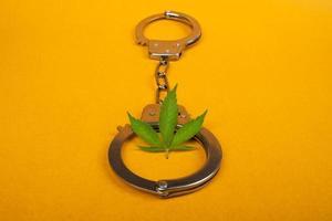 Castigo y arresto por uso ilegal de cannabis, esposas y hojas de marihuana sobre fondo amarillo. foto