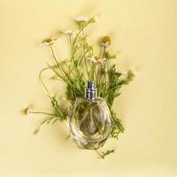 Frasco de perfume con aroma de manzanilla sobre fondo amarillo laicos plana foto