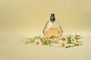 Frasco de perfume de moda con aroma de manzanilla sobre fondo amarillo foto
