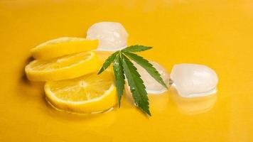 cooling lemon with marijuana flavor and ice cubes on yellow background photo