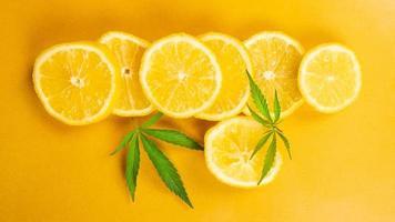 lemon slice and marijuana leaves on yellow background, citrus flavored cannabis photo