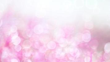 bokeh rosa suave y blanco video