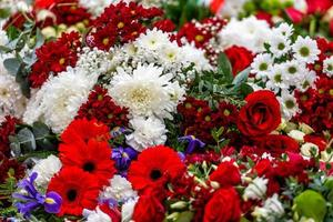 Irregularly placed flowers in various colors, Multi colored floral background - Image photo