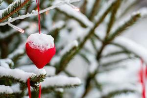 Colorful decorations on snow-covered Christmas tree branches photo