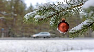 Red Christmas Ball on the snow covered Fir Branch  next to the highway. photo