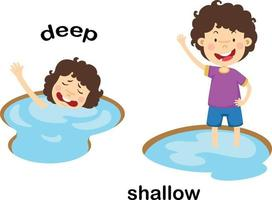 Opposite words deep and shallow vector illustration