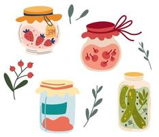 Homemade jars of preserving the fruit and vegetables. Set of glass jars with preserved vegetables, stewed fruits and berry jams. Berry compote or marmalade, jam. Autumn harvest season. Vector