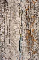 tablero de madera vieja, superficie desgastada del grunge foto