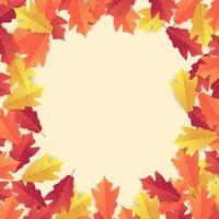 Colorful autumn leaves background. vector