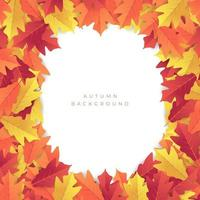 Colorful autumn red and yellow leaves background. vector