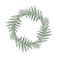 tropical twigs in a circle and place for text. a wreath of branches vector