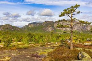 panorama con abetos y montañas naturaleza paisaje nissedal noruega. foto