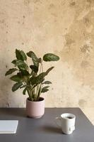 el diseño minimalista del escritorio de trabajo en casa foto