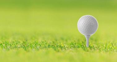 Pelota de golf en el tee sobre la hierba verde, campo de golf foto