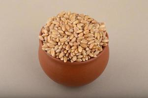 Wheat grains in clay pot on cream background. Close up. photo
