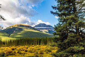 los colores del otoño en todo su esplendor a lo largo de la avenida de Bow Valley. Parque Nacional Banff, Alberta, Canadá foto