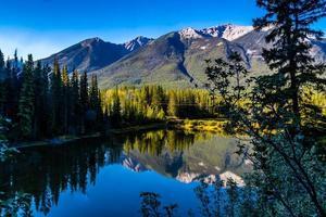 Summertime along the Bow River. Banff National Park, Alberta, Canada photo