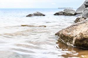 Piedras de granito en el agua en la orilla del golfo de Finlandia. foto