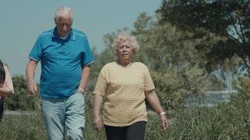uma mulher um homem e uma menina caminhando e conversando no campo video