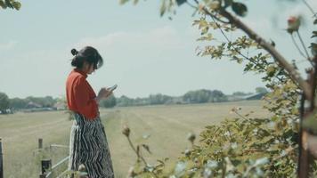 Woman standing in field scrolling on smartphone video