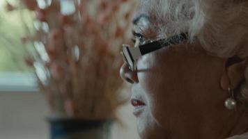 Woman talks in living room video