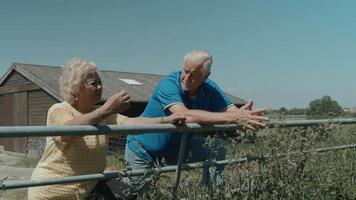 mulher e homem encostados na cerca no campo conversando video