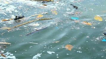 questões ambientais resíduos de plástico no oceano 4k video
