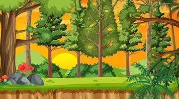 bosque de la naturaleza en la escena del atardecer vector