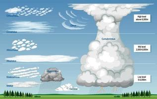 The different types of clouds with names and sky levels vector