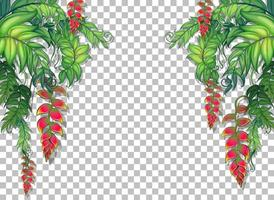 Tropical plants and leaves frame vector