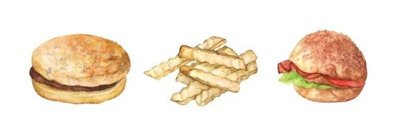 Set of Hamburger and french fries. Watercolor illustration. vector