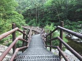 The small iron bridge in Seoraksan National Park. South Korea photo