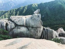 Big rocks at Seoraksan National Park, South Korea photo