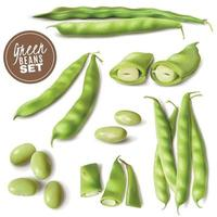 Green Beans Realistic Set Vector Illustration